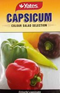 Picture of Capsicum - Color Salad Selection