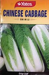 Picture of Chinese Cabbage - Chi Hi Li